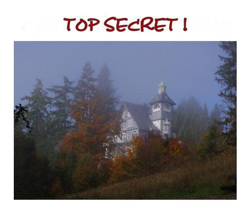 TOP SECRET! - der Überraschungskrimi -Krimi Events als Betriebsausflug, Teamtraining, Incentive